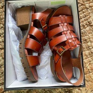 Gladiator multi strap sandal